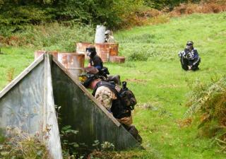 ambush paintball