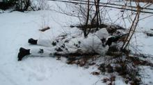 Paintball winter photo